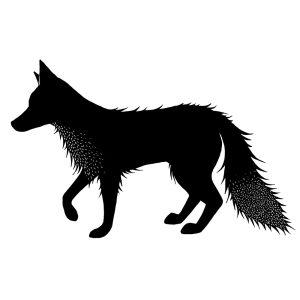 Fox 2 (Peri)