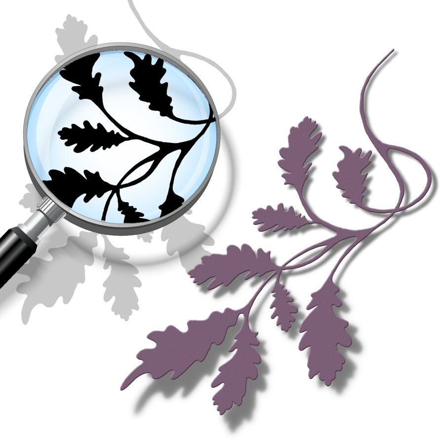 Oak-Leaf-Cutting-File.jpg