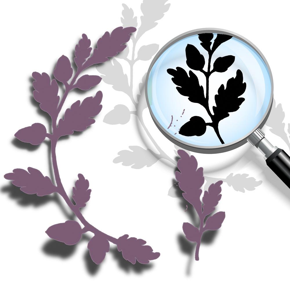 Oak-Leaf-cut.jpg