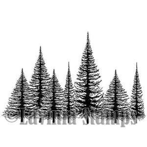 Christmas Tree Group (digital)