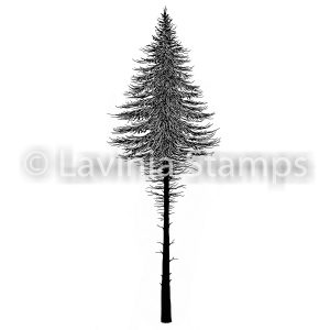 Fairy Fir Tree 2 (Small)