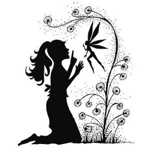 Fairy Wish