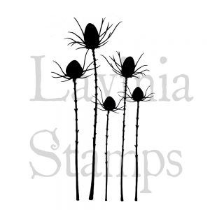 Silhouette thistle