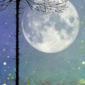 Night-time Magic