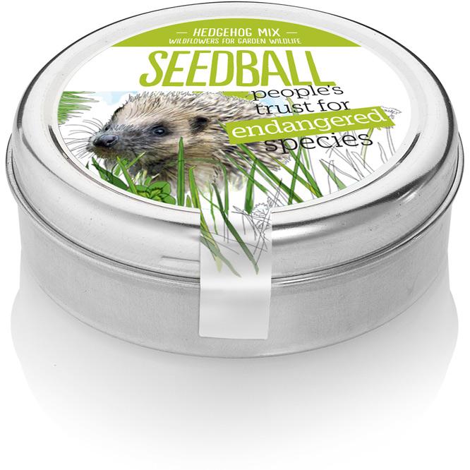 seedball-Hedgehog-01