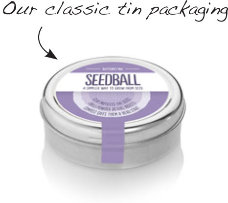 seedball-about_page-001