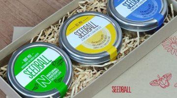seedball-giftbox-07