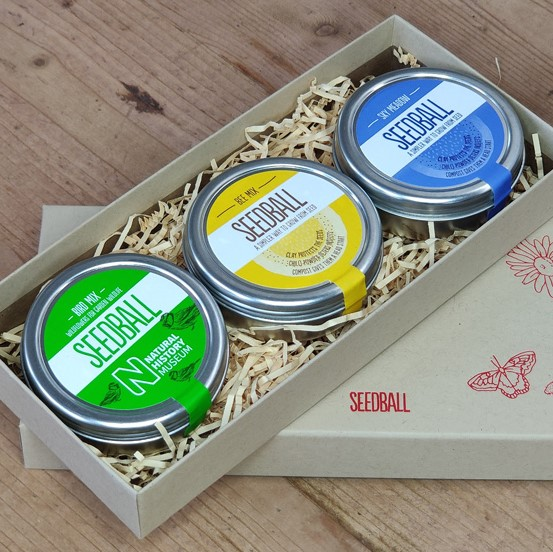 seedball-giftbox-07