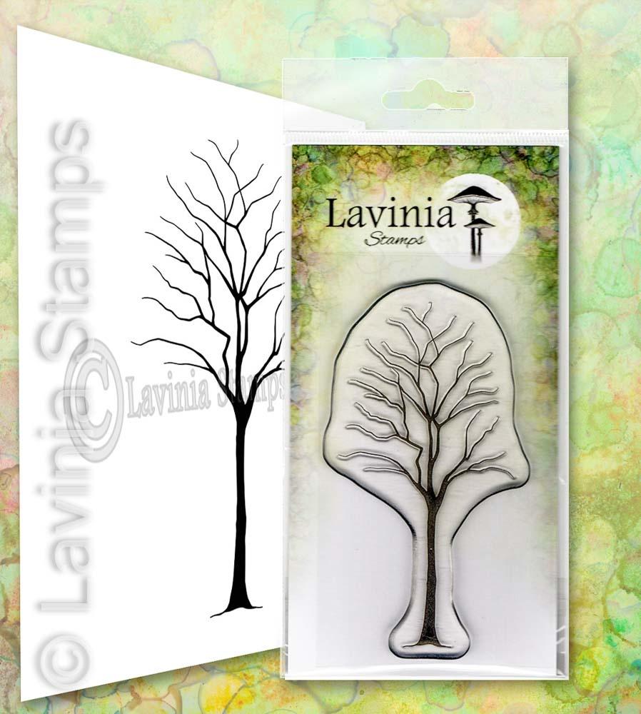 LAV649 Birch