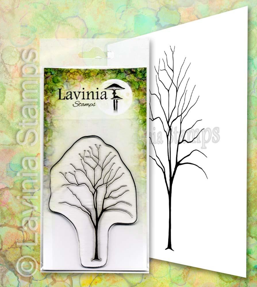 LAV652 Elm