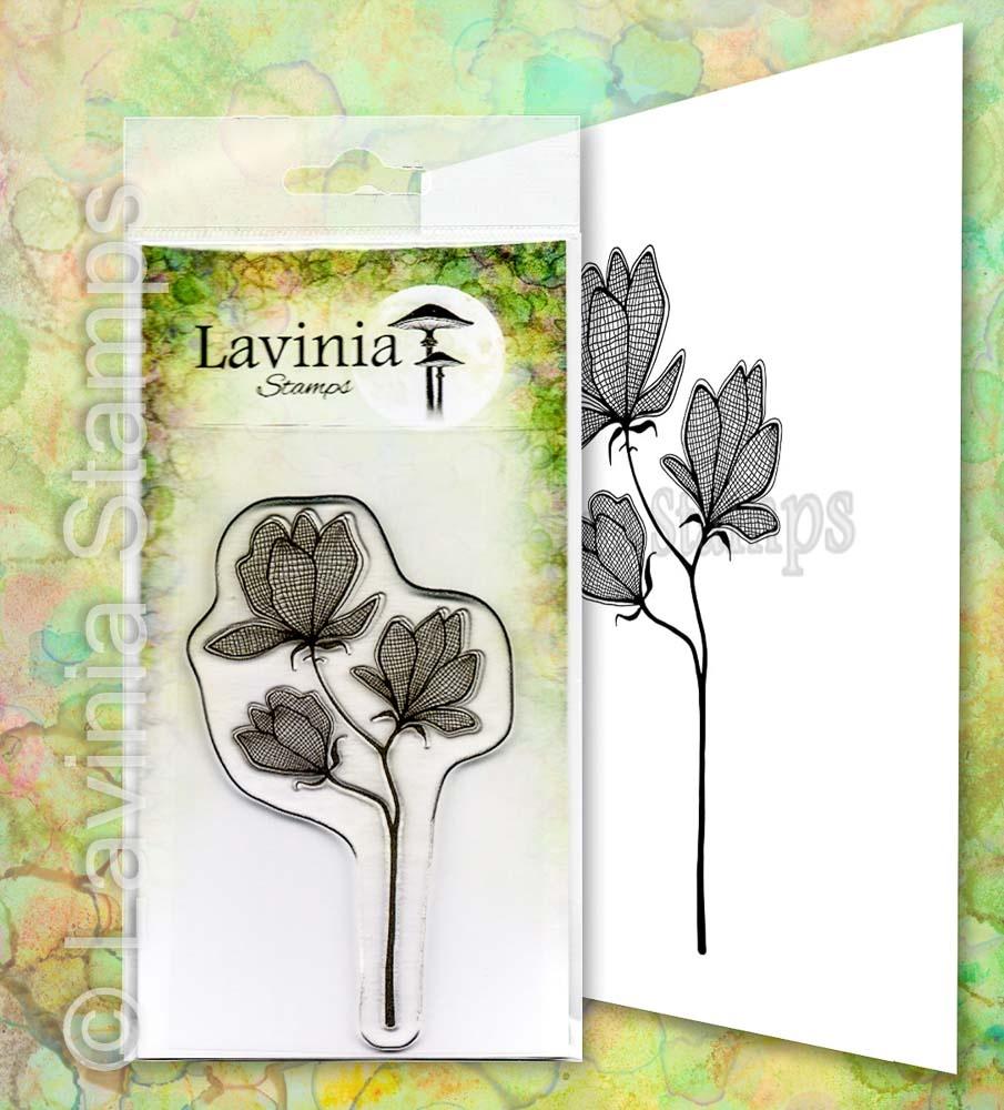 LAV653 Lillium