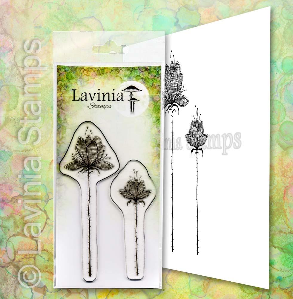 LAV654 Lillium Set