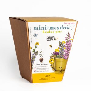 Mini Meadow Gift Set - Bee Mix