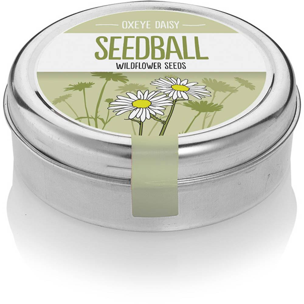 seedball_product-oxeyedaisy-01