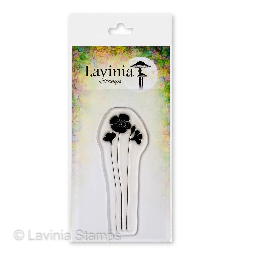 LAV689 Garden Poppy