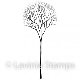 single skeleton tree_