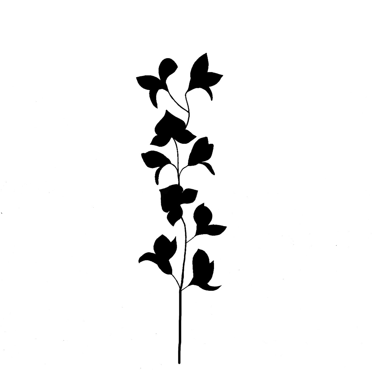 ivy silhouette www imgkid com the image kid has it lantern clipart black and white lantern clip art images
