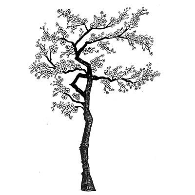Cherry Blossom Tree Lavinia Stamps Ltd