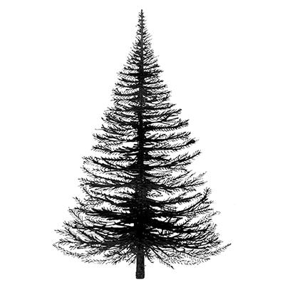 fir_tree.jpg